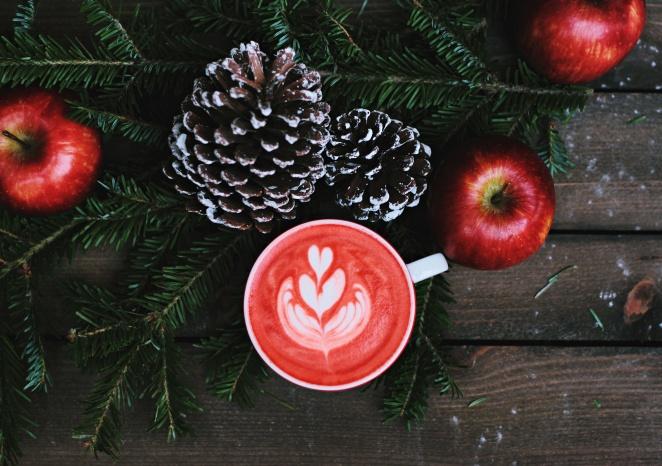 christmas-cheer-wsdf95msusi-toa-heftiba-copy